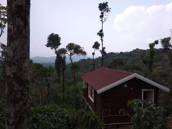 pravat premium plantation stay mudigere karnataka cottage rh tripadvisor in