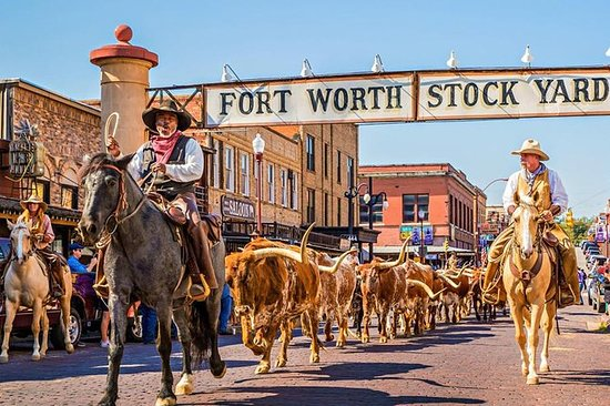 Best Of Fort Worth (petit groupe)