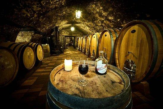 Bohemian Wine Degustation Day Trip!