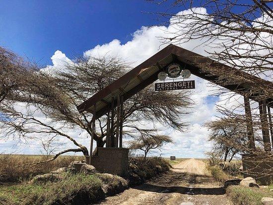 Tanzania Classic - 7 Days: Serengeti National Park... The beginning!