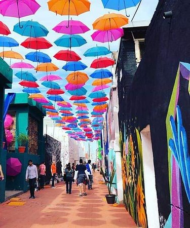 Ciudad Obregon, Mexico: Bunka... Callejon del Arte