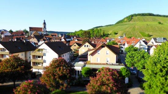 Hotel Rebstock in Erlenbach