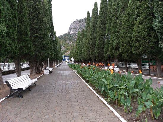 Cypress Alley
