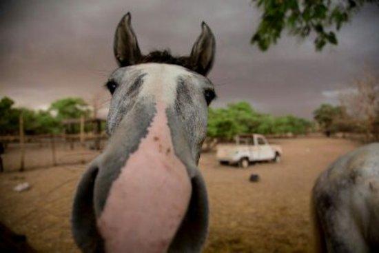 Ouagadougou, Burkina Faso: getlstd_property_photo