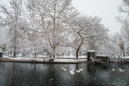 Winter view of the lake