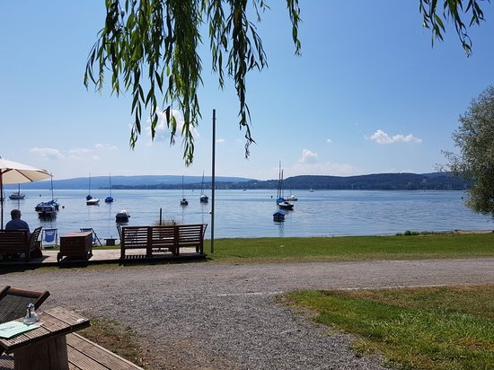dating bodensee)