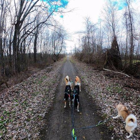 Gord Harry Trail