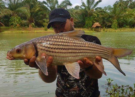 Chumphon Fishing Resort Thailand