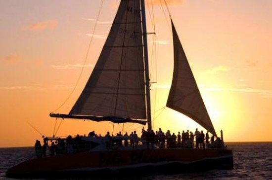 Palm Nöje Sunset Sail