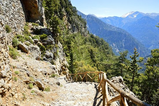 Full Day Tour to Samaria Gorge