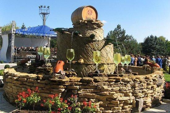 从基希讷乌前往Milestii Mici Winery的葡萄酒之旅