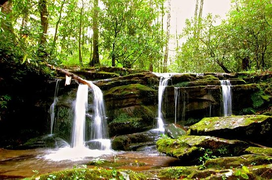 Great Smoky Mountains Waterfall...
