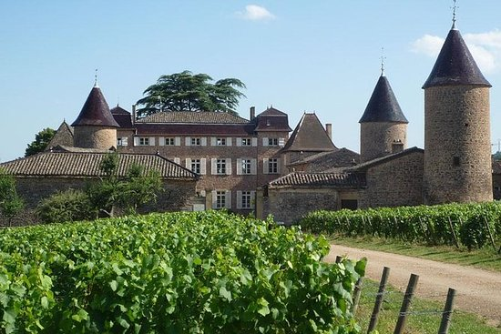 Private Castles of Burgundy Tour with...