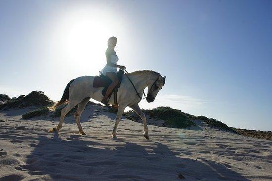 Aruba Reittour für Fortgeschrittene