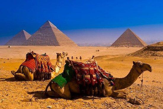 Excursão diurna Pirâmides de Gizé e...