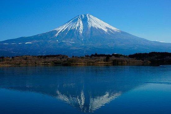 Charter privado de 1 día, Mt.Fuji y...