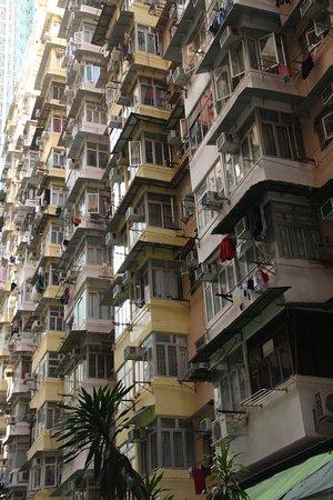 Colourful apartments