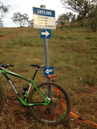 Tamworth Mountain Bike Park