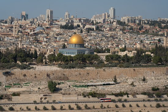 Zvi Geva - Your Israel Tour Guide