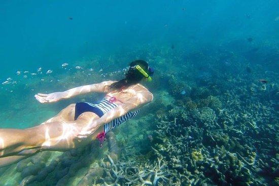 Fantastisk snorkling på Bali