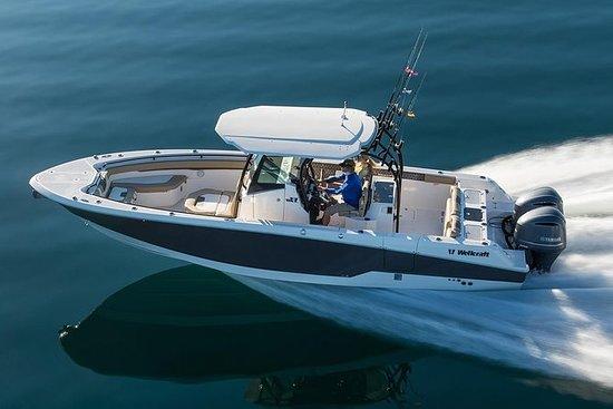 USVI和BVI私人船租赁 - 半天和全天的新型快速动力艇