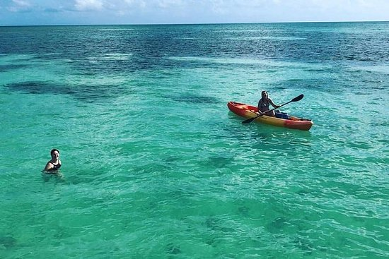 Key West Morning Boat Charter (up to...
