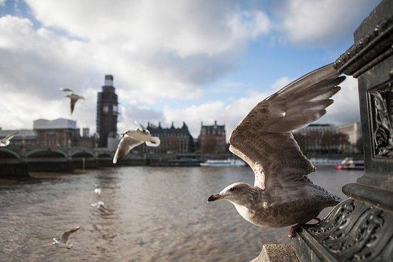 Turnê de fotografia de Londres Soho...