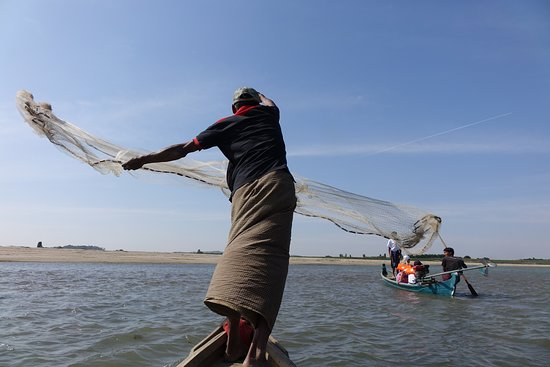Область Мандалай, Мьянма: Fisher man chasing fish on the Ayeyarwaddy River.