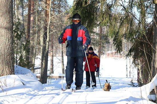 Kangasniemi, Finland: Cross-country  skiing in Finland