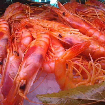 imagen Restaurante Frontera en Tobarra