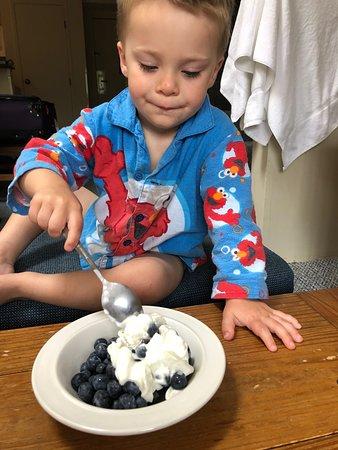 Lebanon, ME: Blueberries for breakfast...yum