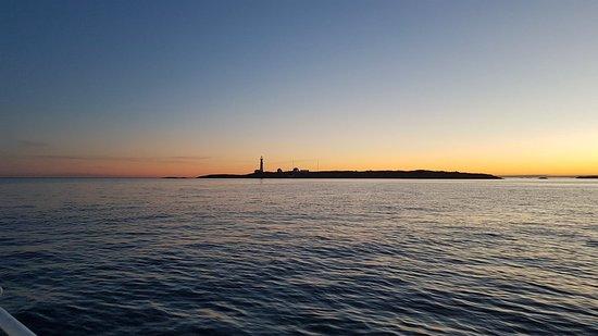 Faervik, Norvégia: Båttur med utsikt til Torungen fyr