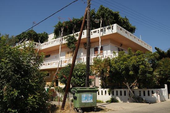 Chania Prefecture, Greece: VITIGNO SUL TETTO DI UNA CASA SULLA STRADA CHE DA CHANIA PORTA AD ELAFONISI