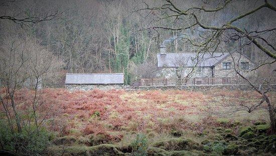 Gwynedd, UK: Farm.