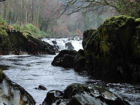 Gwynedd, UK: River.