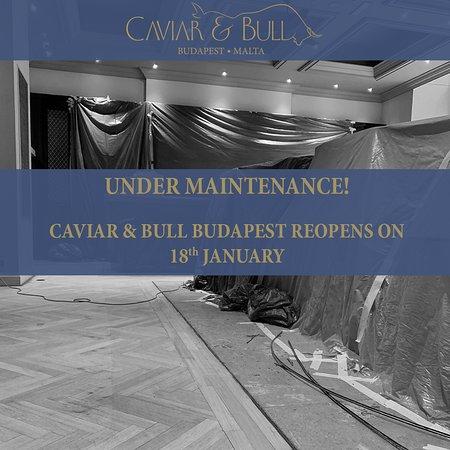 Caviar & Bull