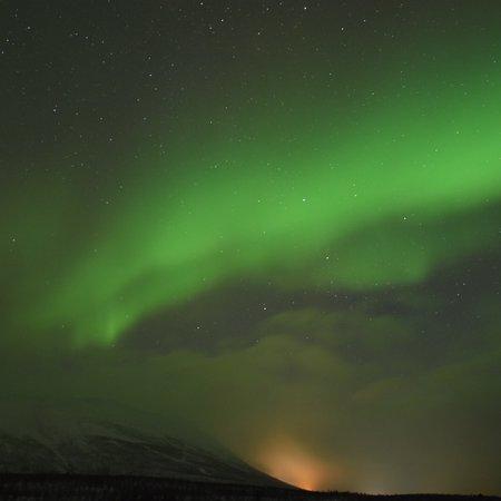 Lights Over Lapland-bild