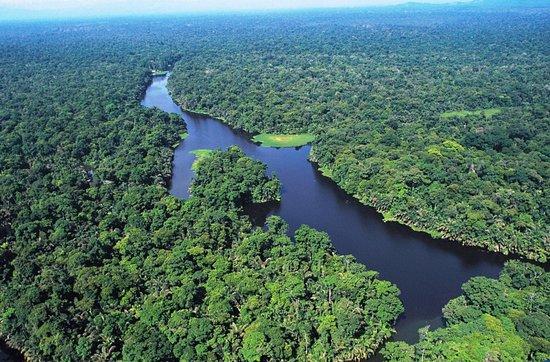 טורטוגרו, קוסטה ריקה: Tortuguero Canals