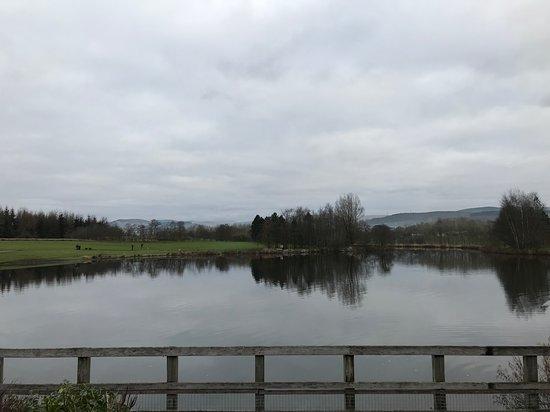 Lockerbie, UK: Tranquil meal stop