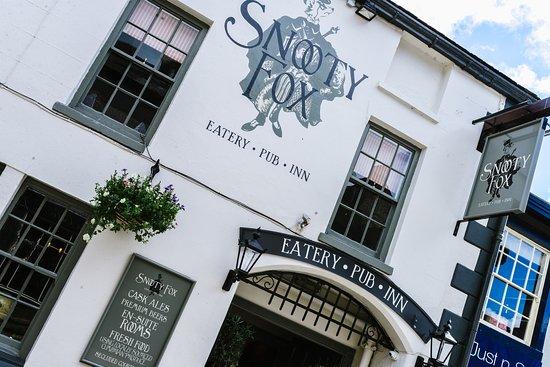 Snooty Fox