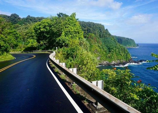 Holo Holo Maui Tours