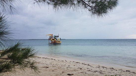 North Side, Γκραντ Κέιμαν: Jungle float Cayman.. come and visit us