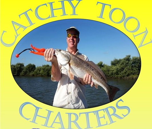 Catchy Toon Charters