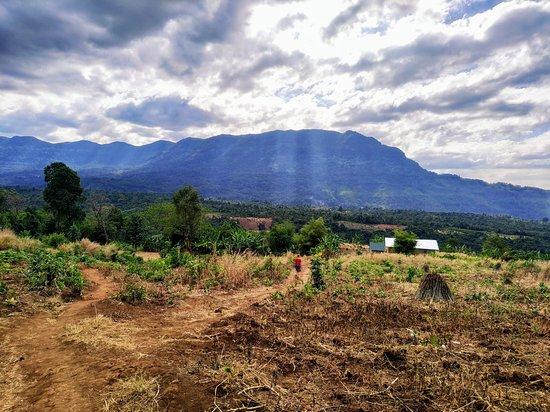 Champasak Province Foto