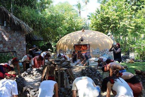 Turtle Release Aztec Religious...