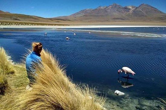 3-Day, 2-Night Uyuni Salt Flats with...