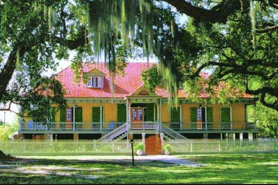 Plantation Tour: Excursão a plantação...