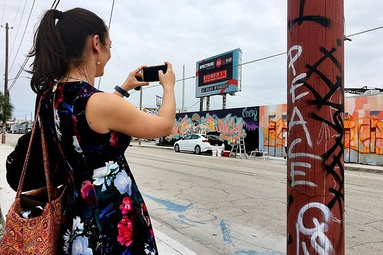 Explora Wynwood con un artista local