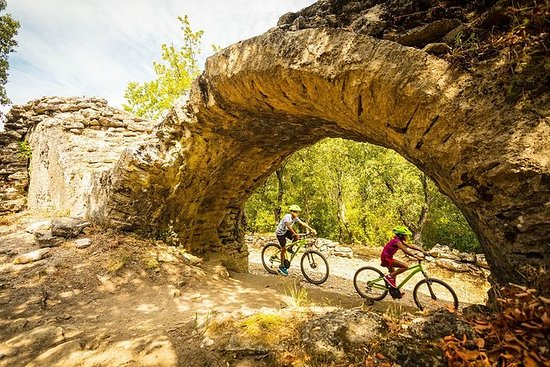 Bicicleta de montaña eléctrica Pont...