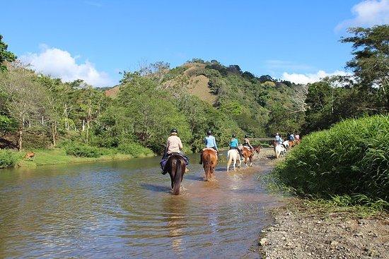 Hesteturer, Jaco-regionen Costa Rica